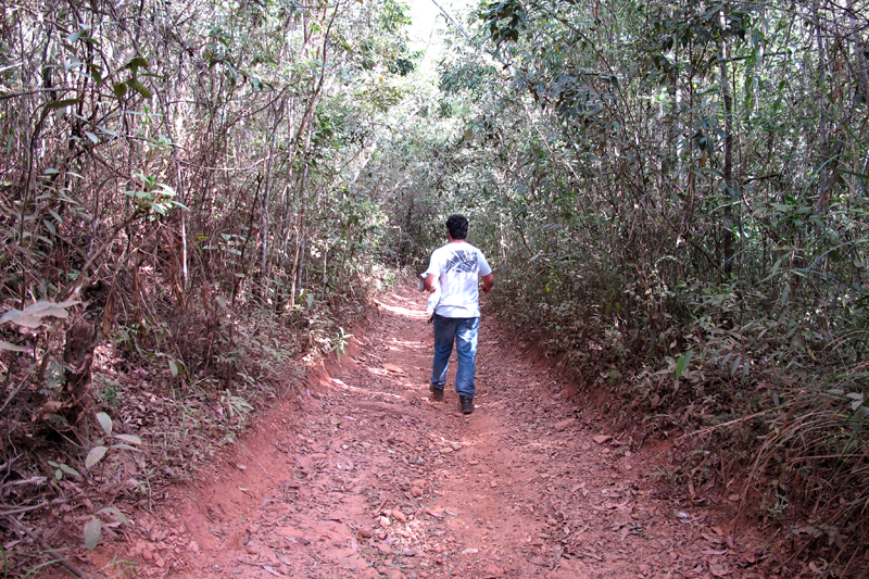 Trilha para Cachoeira de Santo Antônio, em Morro Vermelho