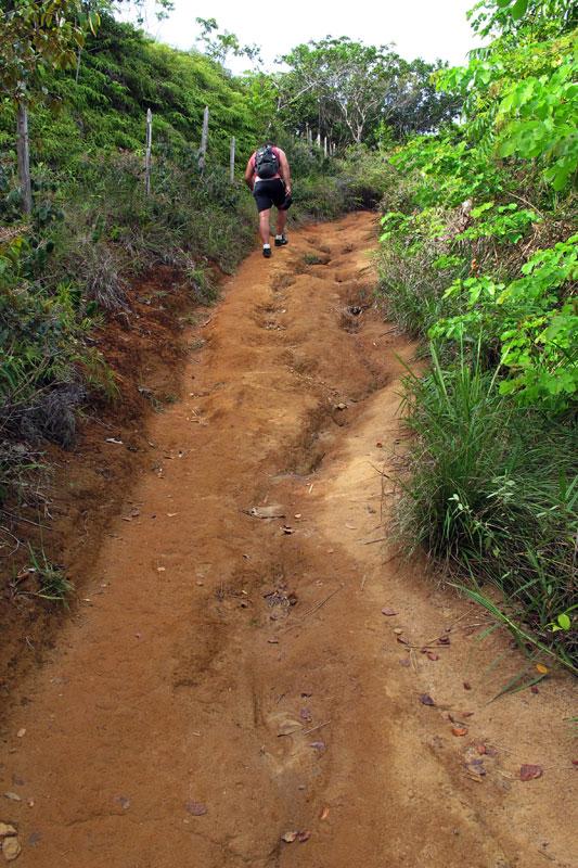 Outro trecho da trilha para Jeribucaçu