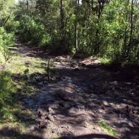 Um pouquinho de lama na trilha pra Pedra Redonda...