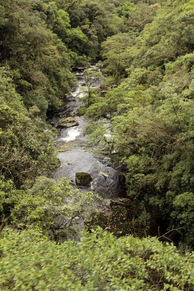 Ilha-do-Mel-648